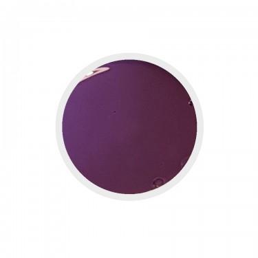 Gel colorato n.192 Royal Lilac