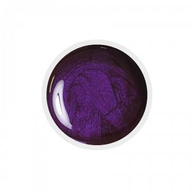 Color Paint uv gel n.12 Brill Purple